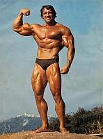 Arnold Schwartzeneggar